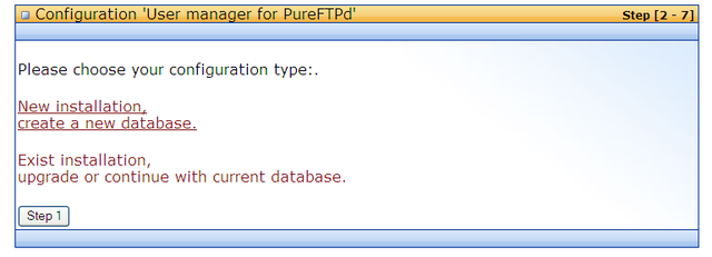 pure-ftp install1